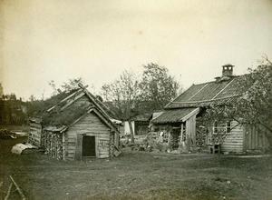 Eit ukjent gardstun i Suldal kring 1890.