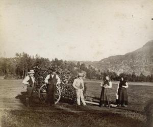 Dei har drive med lauving på Vasshus i nedre Suldal, og kjerra er fylt med lauvkjervar. Bildet er frå 1888.