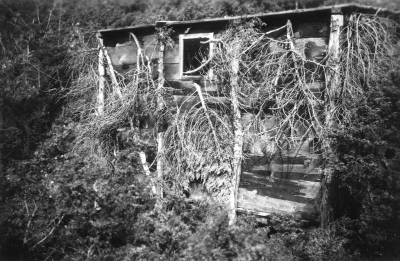 Den lille hytta i Eikjeskoro på Djuve i Åkrafjorden der Rabinowitz holdt seg skjult når det ble for utrygt nede ved fjorden.