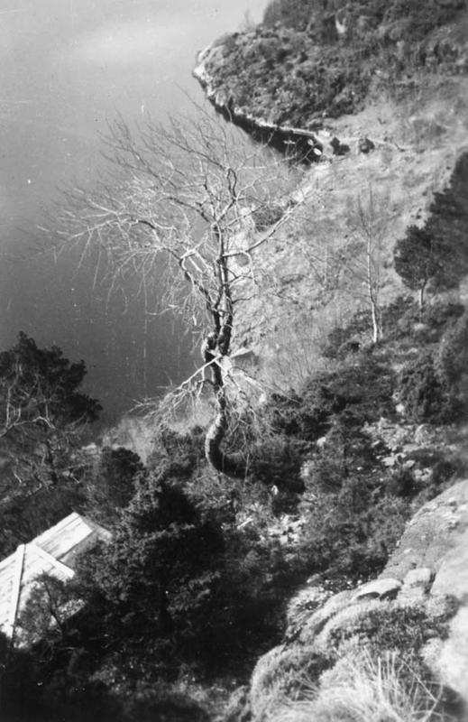 Utsikt fra hytta i Eikjeskoro på Djuve.