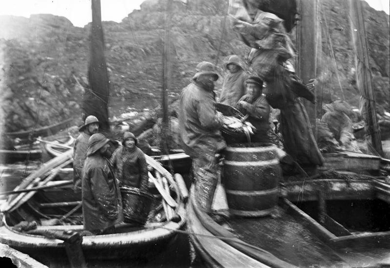 To fiskebåter ligger ved siden av hverandre, det er tre fiskere i bruksbåten til venstre og fem fiskere på jekten til høyre. De tømmer sild fra mindre baljer over i tretønner (helinger) som er på dekk av jekten. Foto: Stavanger Sjøfartsmuseum, ST.S 1983-057-0134.