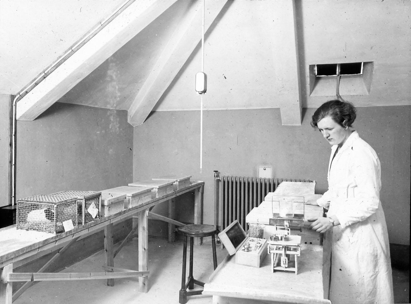Hermetikklaboratoriet hadde egen bygning for forsøksdyr. Foto: MUST. Fotograf: ukjent.